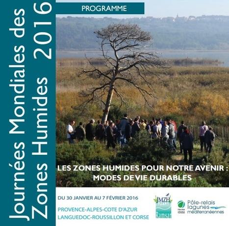 Journées mondiales des zones humides en Méditerranée, édition 2016 | Zones humides - Ramsar - Océans | Scoop.it