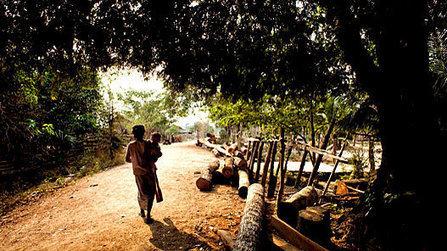 Cambodia - DanChurchAid | Andersen Cambodia | Scoop.it