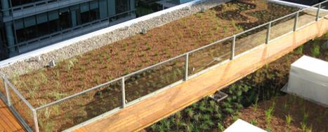 Les toitures végétalisées se font intelligentes | InnovCity | La nature en ville. | Scoop.it