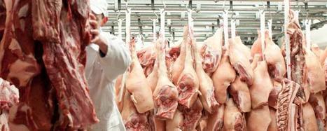Umweltbundesamt empfiehlt 'Klimasteuer' auf Fleisch | Agrarforschung | Scoop.it