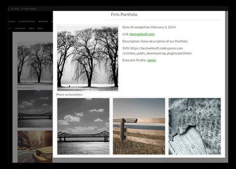 Some Of The Best WordPress Portfolio Plugins | Elegant Themes Blog | WordPress Website Optimization | Scoop.it