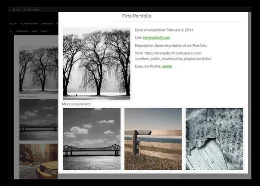 Some Of The Best WordPress Portfolio Plugins | Elegant Themes Blog