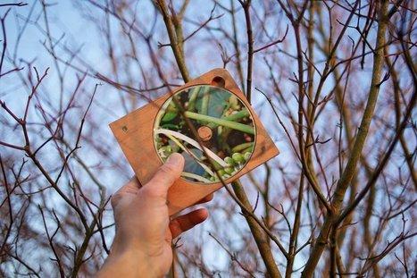 Nature contre culture - Charles Dahan | DESARTSONNANTS - CRÉATION SONORE ET ENVIRONNEMENT - ENVIRONMENTAL SOUND ART - PAYSAGES ET ECOLOGIE SONORE | Scoop.it