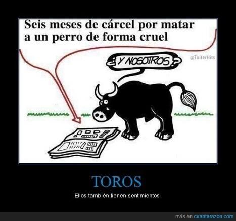 Con los toros no es crueldad, es tradición... - Ellos también tienen sentimientos | Erika Guerrero | Scoop.it