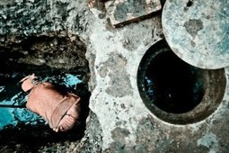 A Closer Look Inside Your Clogged Drains | Aasrimcountrychapter.com | home improvement | Scoop.it