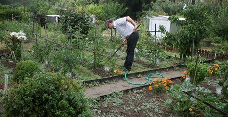 Ces Toulousains qui partagent leurs jardins | Immobilier | Scoop.it
