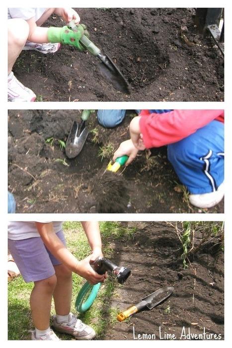 The Educators' Spin On It: School Garden Learning Activities   Εδώ Νηπιαγωγείο   Scoop.it