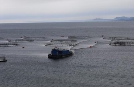 Presentarán innovador proyecto que busca obtener energía de las corrientes marinas para centros de cultivo » Aqua | Energy from the Sea | Scoop.it