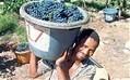 How fine is Fairtrade wine? | Vitabella Wine Daily Gossip | Scoop.it