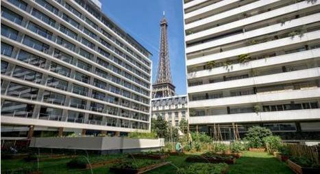Cette brasserie fait pousser ses fruits et légumes 100% bio au pied de la Tour Eiffel | Le Petit Jardinier Urbain | Scoop.it