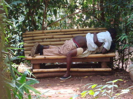 Sex on the 'BENCH' at Muliro Gardens, Kenya | All About Escort Guide | Scoop.it