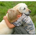 Study: Dogs Show Natural Desire to Comfort Human Companions | Animals Make Life Better | Scoop.it