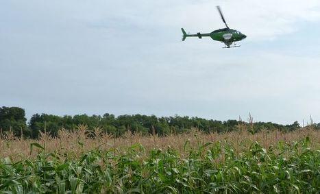 Euralis : un hélicoptère pour semer les couverts végétaux | Agriculture Aquitaine | Scoop.it