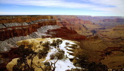 Grand Canyon Winter Makes the Terrain Perfect for Skiing and Snowboarding | Grand Canyon Things to Do | Scoop.it