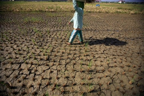 New analysis confirms the danger of climate change | Climate Smart Agriculture | Scoop.it