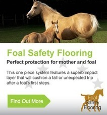 Equestrian Rubber Surfaces – An Important Discussion About Coloring Surfaces | Stable Matting | Stable Mats | Scoop.it
