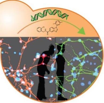 Yeast, human stem cells drive discovery of new Parkinson's disease drug targets | #ALS AWARENESS #LouGehrigsDisease #PARKINSONS | Scoop.it