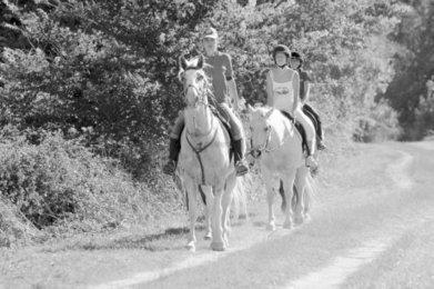 Nos chers amis les touristes | Actus tourisme et développement Poitou-Charentes | Scoop.it