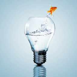 Open Innovation - Definition and Benefits   BRE Ventures   Scoop.it