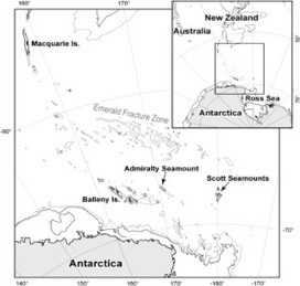 """The Echinoblog: The Lost World: The biology of echinoderm """"living fossils"""" (stalked crinoids) on an Antarctic Seamount!! 