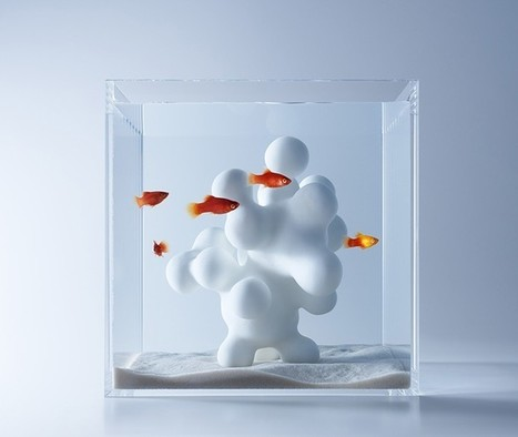 waterscape fish aquariums by haruka misawa | Digital Design and Manufacturing | Scoop.it