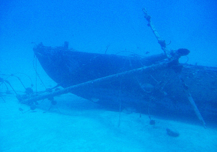 2,000 Year-Old Shipwreck Discovered, Contains Natural Medicines | Holistic Healing | Scoop.it