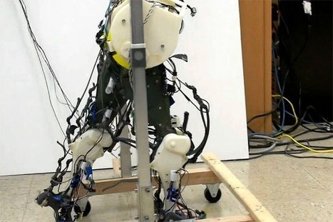 Robotic legs simulate our neural system, lurch along in the most human-like way so far | EEDSP | Scoop.it