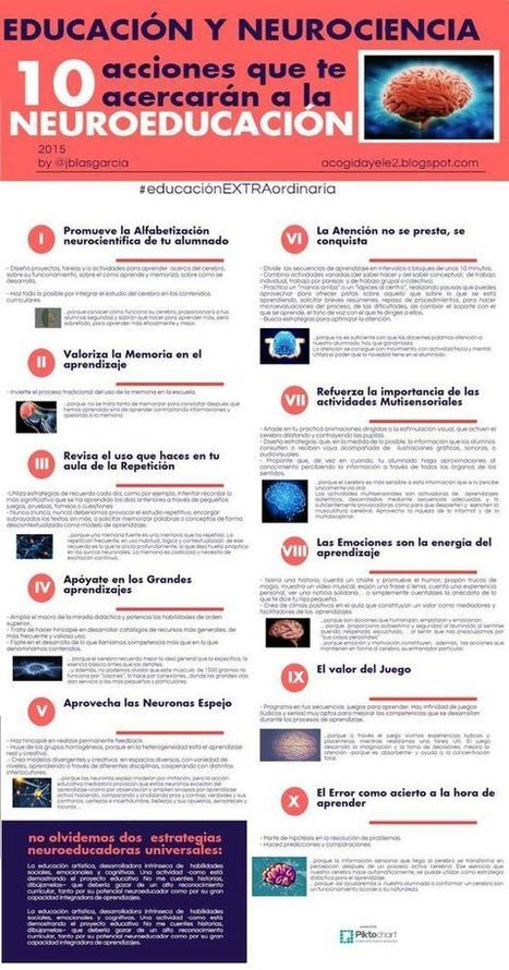 10 Claves para Abordar la Neuroeducación | Infografía | Universidad 3.0 | Scoop.it