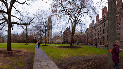 Yale Officially Declares 'Nonconsensual Sex' Not That Big of a Deal | The Culture | Scoop.it