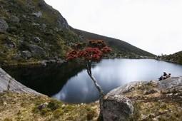 Colombia: Invierten en la conservación de Páramos y Humedales | Canal Azul 24 | Agua | Scoop.it