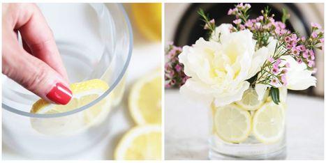 35 DIY Ideas for Creative Floral Arrangements   Event Accessories: Ideas, Designs, ETC.   Scoop.it