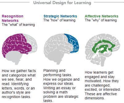 CAST: Universal Design for Learning | Educación flexible y abierta | Scoop.it