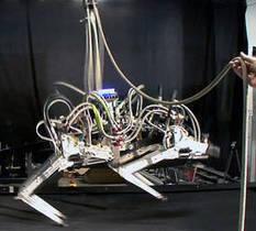 En vidéo : Cheetah, le robot le plus rapide du monde… à la course | 21st Century Innovative Technologies and Developments as also discoveries, curiosity ( insolite)... | Scoop.it