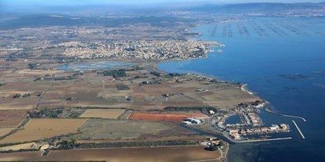 Opération antipollution sur les réseaux du nord du bassin de Thau | Confidences Canopéennes | Scoop.it