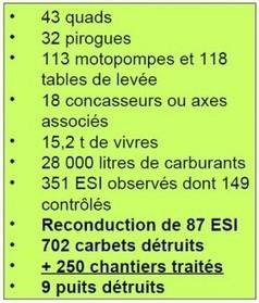 Comment contenir le retour des orpailleurs illégaux ? - lekotidien.fr | Guyane orpaillage illégal | Scoop.it