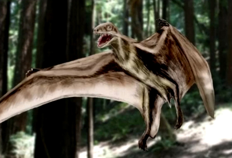 Top 10 Weirdest Dinosaurs You Have to See | Articles | Scoop.it