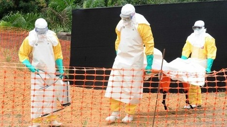 Experts: Ebola Vaccine At Least 50 White People Away | Just real interesting | Scoop.it