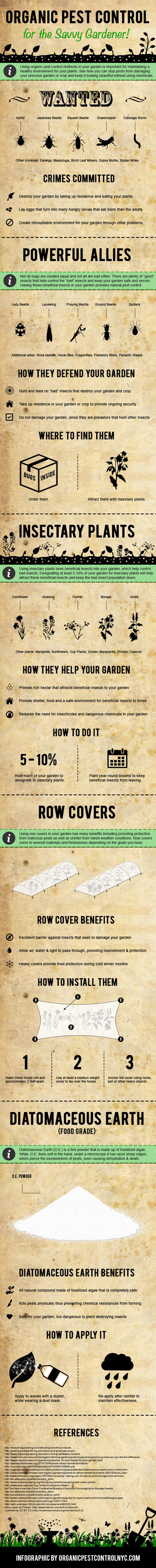 DIY Garden Pest Control [Infographic] | Gardening Life | Scoop.it