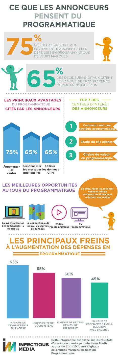 [Infographie] Ce que pensent les annonceurs du programmatique | Big Media (En & Fr) | Scoop.it