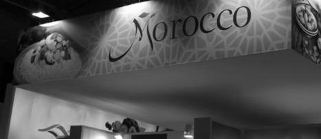 Sud-Sud - Maroc : un second souffle pour la stratégie africaine? | Afrique | Scoop.it