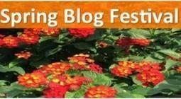 Memories from Spring Blog Festival 2015 | eLearning Industry | Scoop.it