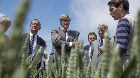 Changement climatique, le défi du siècle pour l'agriculture mondiale | Questions de développement ... | Scoop.it