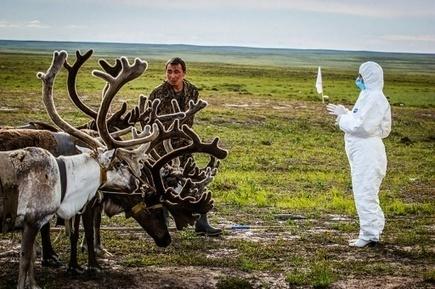 Russie: dans le permafrost, virus et bactéries attendent le dégel | Reduce your emissions! | Scoop.it