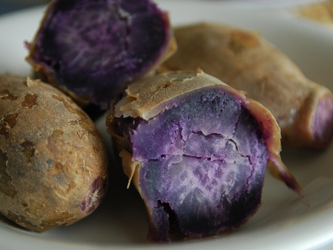 Purple Sweet Potato A Contender To Replace Artificial Food Dyes | Healthy Recipes and Tips for Healthy Living | Scoop.it