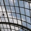 Le Grand Palais Paris | Technophile | Scoop.it