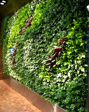 AMEX Lounge at McCarran Airport » GSky Plant Systems, Inc. - | Wellington Aquaponics | Scoop.it