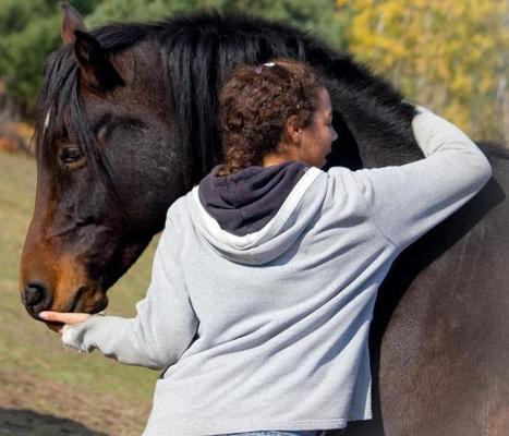 PEACE Ranch - Home  Support The Covering Project New for 2012!   | Equine Assisted Psychotherapy | Scoop.it