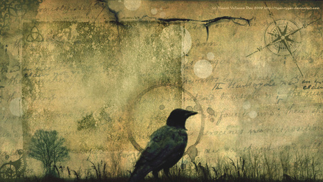 Crows could be the key to understanding alien intelligence | Strange days indeed... | Scoop.it