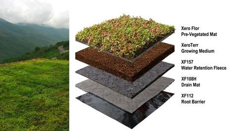 Xero Flor Green Roofs Get Cradle to Cradle | Sustainable Futures | Scoop.it