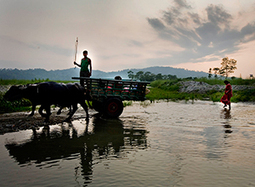 Strengthening responses to Climate Change variability in South Asia | International Alert | Ecosystem and community-based climate adaptation | Scoop.it